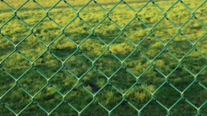 This is a picture of Rancho Cordova fence.